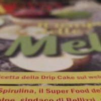 alga-spirulina-superfood-del-benessere-alghepam-alghe-pam1